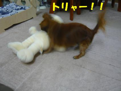 201006262a.JPG