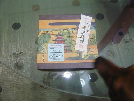 201006291.JPG