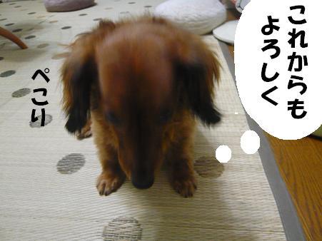 201007274.JPG
