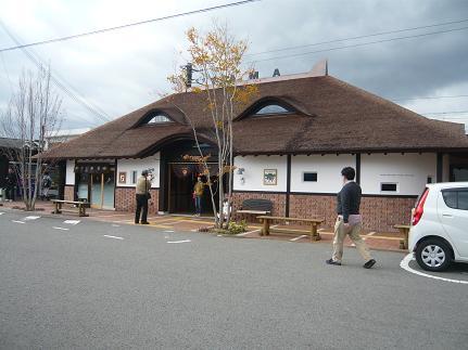 201011241.JPG