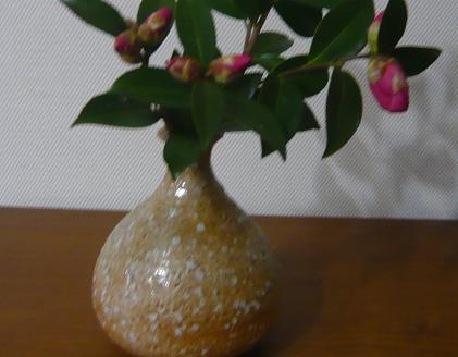 2011012403.JPG