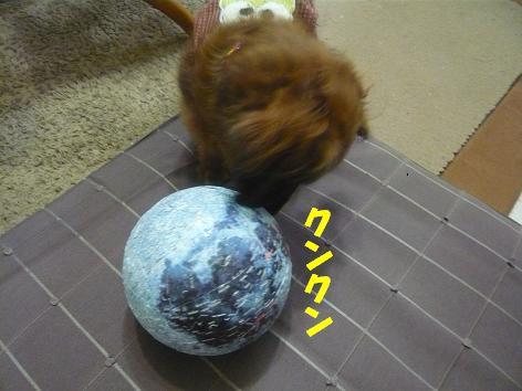 2011020204.JPG
