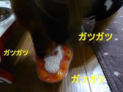 2011122504.JPG
